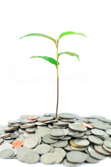Finding financial growth